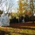 Quartier Bonnefoy à Toulouse